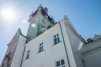 The Palace at Osowa Sien