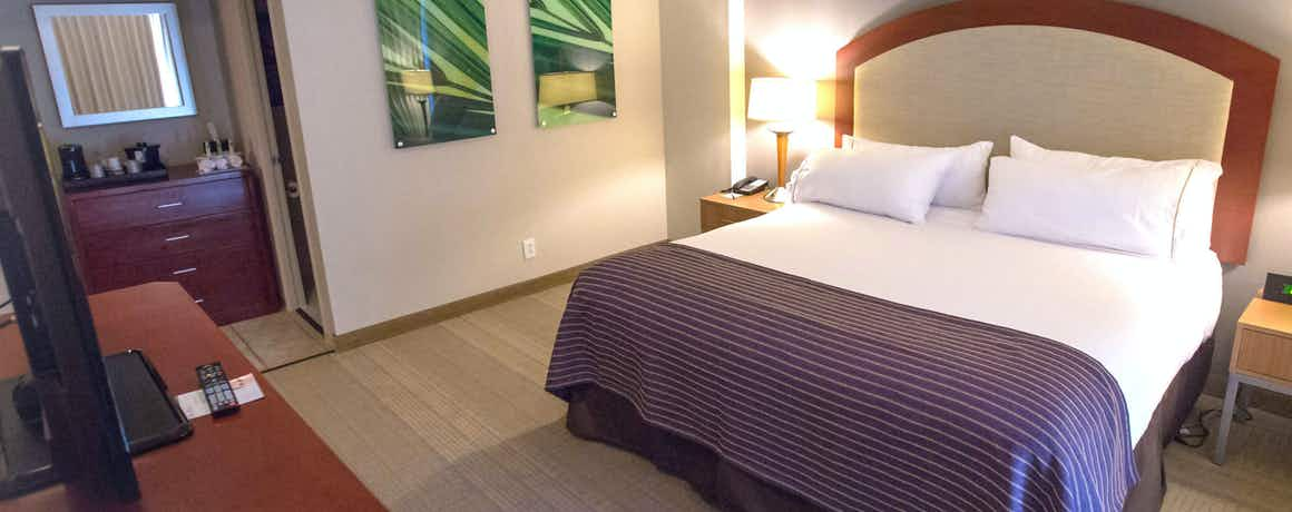 Holiday Inn Express St Louis Central West End
