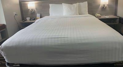 Microtel Inn & Suites By Wyndham Charlotte Airport