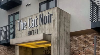 The Cat Noir Hotel