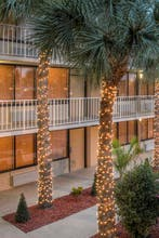 Park Royal Homestay Orlando