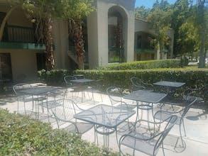 Ivy Palm Resort & Spa