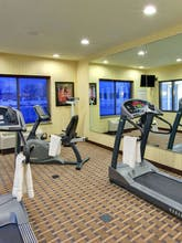 Holiday Inn Express Hotel & Suites Dewitt