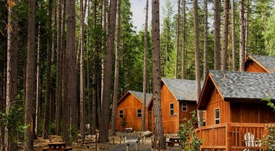 Evergreen Lodge at Yosemite