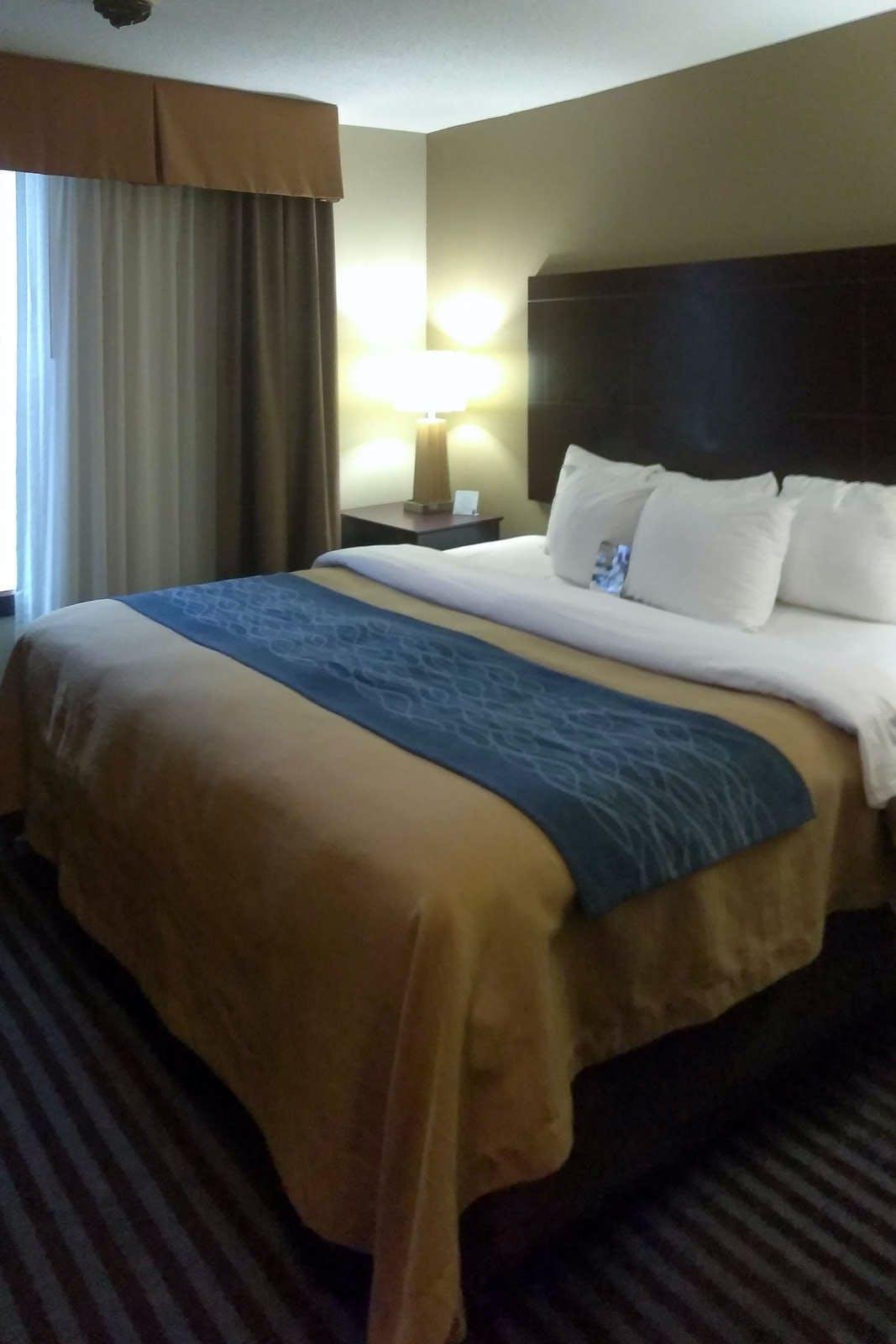 Comfort Inn & Suites Ballpark Area