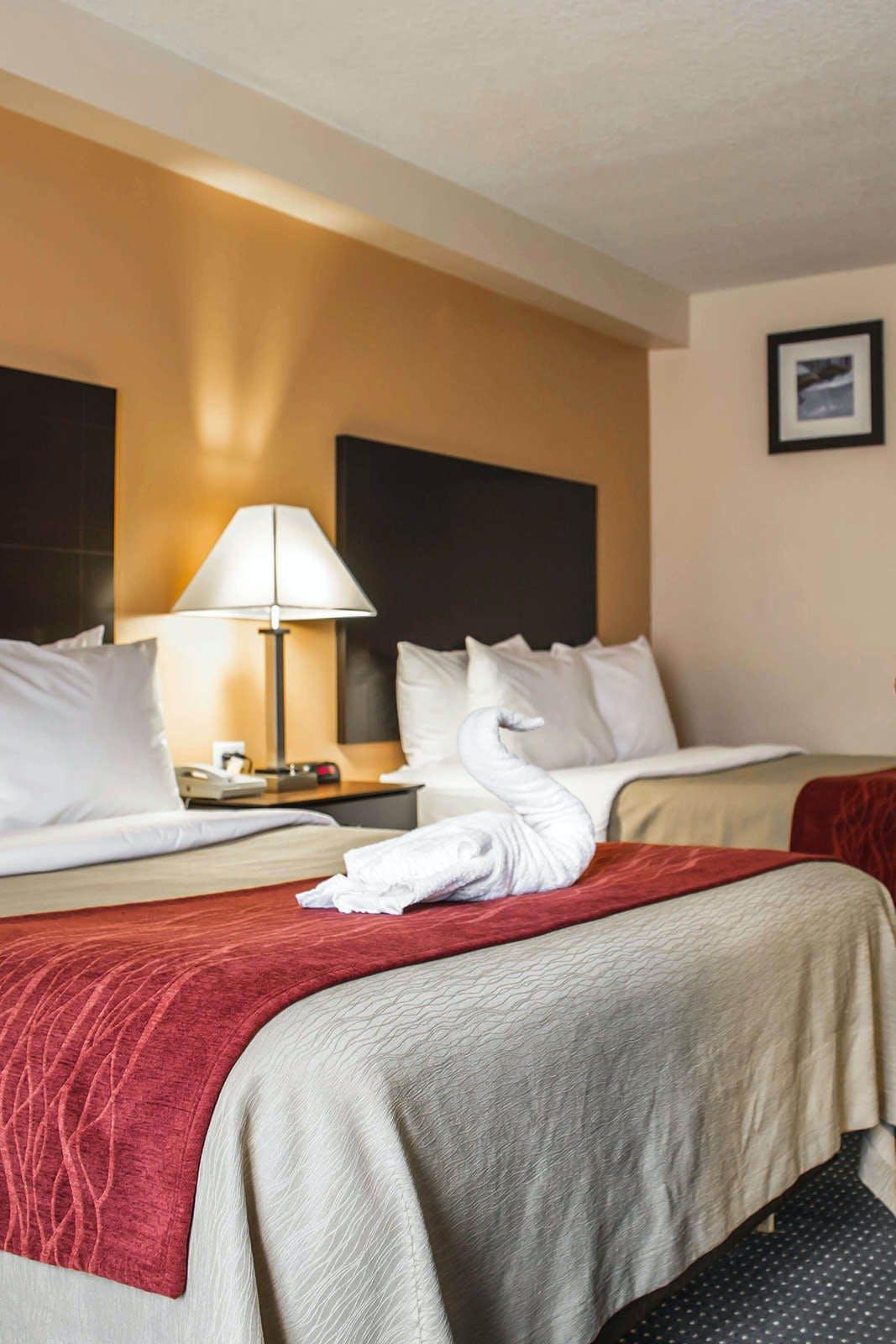 Comfort Inn International Dr.