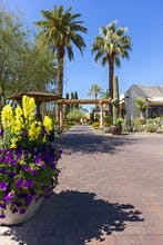 The Wigwam Golf Resort & Spa