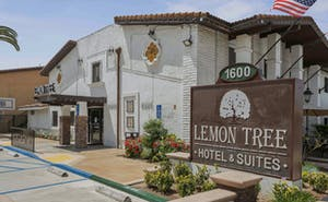 Lemon Tree Hotel and Suites